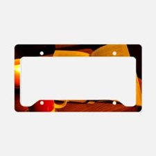 Cute Book lovers License Plate Holder