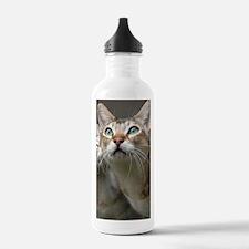 Singapura Eyes Water Bottle