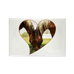 Horse Love Rectangle Magnet (10 pack)