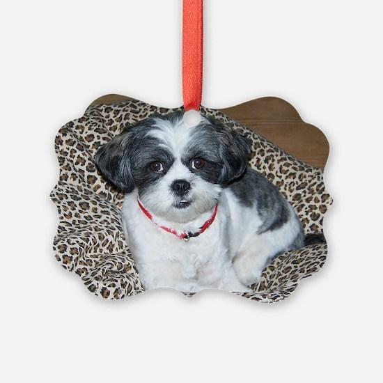 Shih Tzu Dog Photo Ornament