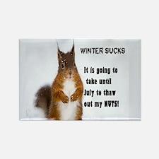 Winter Sucks Magnets