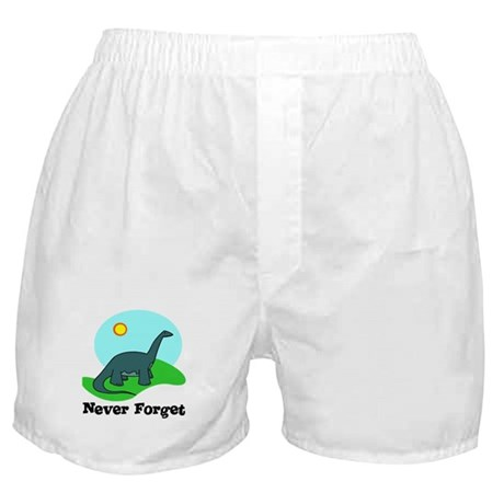 Never Forget Dino Boxer Shorts