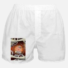Steampunk in noble design Boxer Shorts