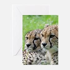 Cheetah009 Greeting Cards