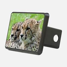 Cheetah009 Hitch Cover