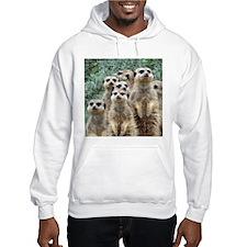 Meerkat012 Jumper Hoody