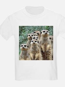 Meerkat012 T-Shirt