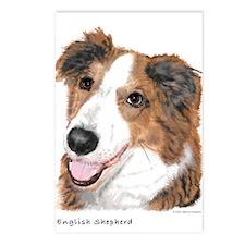 English Shepherd Postcards (Package of 8)