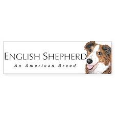 English Shepherd Bumper Bumper Sticker