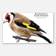 European Goldfinch Decal