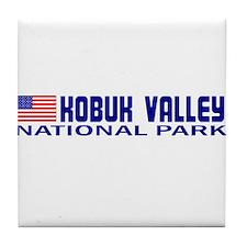 Kobuk Valley National Park Tile Coaster