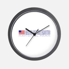 Gates of the Arctic National Wall Clock