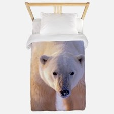 Polar Bear Twin Duvet