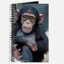 Chimpanzee 007 Journal