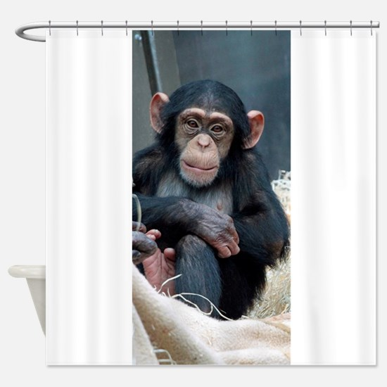 Chimpanzee 007 Shower Curtain