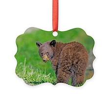 Bear Cub Ornament
