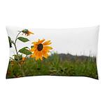 Sunflower In Field Pillow Case