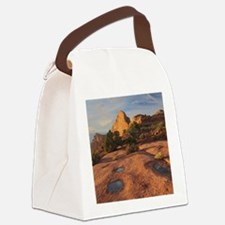 Funny Canyonlands Canvas Lunch Bag