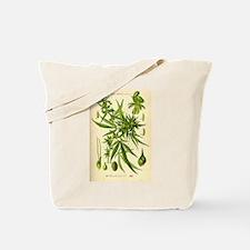 Vintage Cannabis Illustration Tote Bag