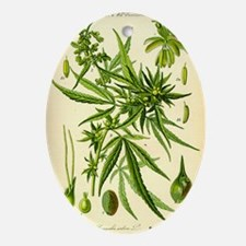 Vintage Cannabis Illustration Oval Ornament