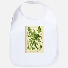 Vintage Cannabis Illustration Bib