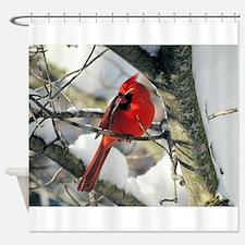 Snow Cardinal Shower Curtain