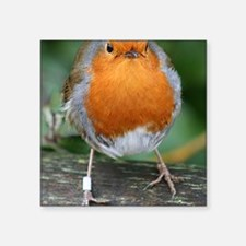 The Red Red Robin Sticker