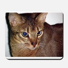 Abyssinian Mousepad