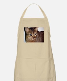 abyssinian second Apron