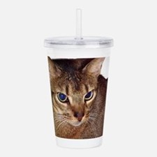 abyssinian second Acrylic Double-wall Tumbler