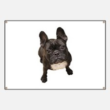 Funny French bulldogs Banner
