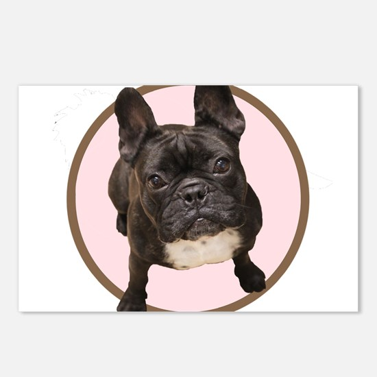 Cool French bull dogs Postcards (Package of 8)