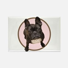 Unique French bull dog Rectangle Magnet