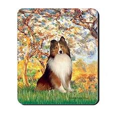 Spring / Sheltie (#1) Mousepad