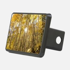 Cute Aspen Hitch Cover