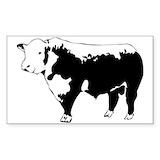 Hereford bull Single