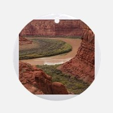 Cute Black canyon of the gunnison national park Round Ornament