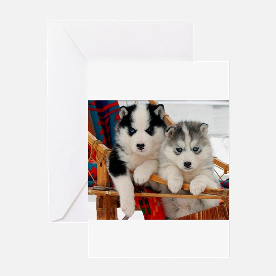 Two Husky puppies Greeting Cards