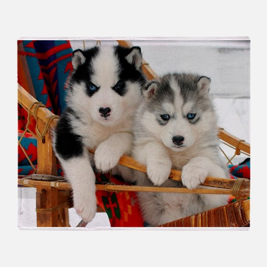 Two Husky puppies Throw Blanket