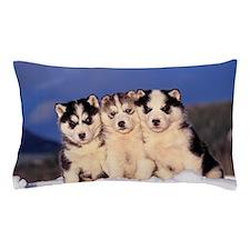 Three Husky puppies Pillow Case