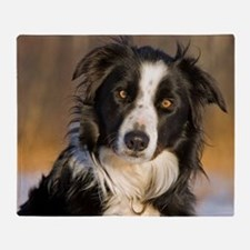 Border Collie 2 Throw Blanket