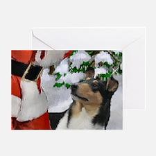 Smooth Collie Christmas Greeting Card