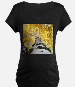 Aspen Tree Maternity T-Shirt
