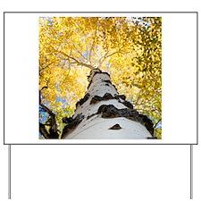 Aspen Tree Yard Sign