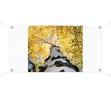 Aspen Tree Banner