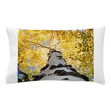 Aspen Tree Pillow Case