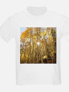 Aspens and Sunshine T-Shirt