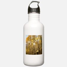 Aspens and Sunshine Water Bottle
