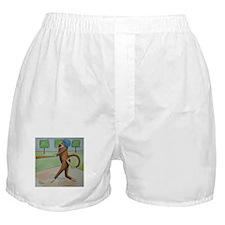 Play Ball Monkey Boxer Shorts