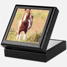 Pretty Paint Pony Keepsake Box